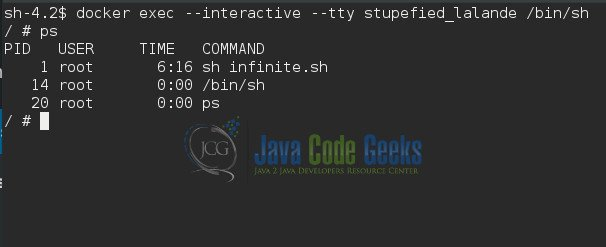Connect to Docker Container Example | Examples Java Code